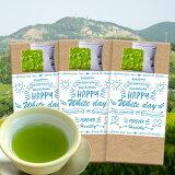 ホワイトデーラッピング(チョコ付)茶和家 カテキンまるごと深蒸し掛川茶300g 送料無料