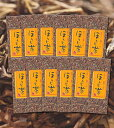 【カフェイン控えめ】ほうじ茶 100g×10本 1kg 【掛川茶】【焙じ茶】【焙茶】【番茶】【業務用】深蒸し茶 深蒸し掛川茶 掛川深蒸し茶【ab】 【asr】