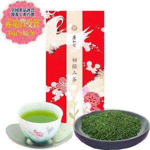お茶 プチギフト 煎茶 緑茶 ギフト 初摘み茶100g たとう包み ギフト 包装 お持たせ おくばり 深蒸し掛川茶
