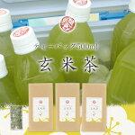 今日からエコ♪ペットボトル用水出し玄米茶3g150袋入3個セットだとさらに1割引&送料無料