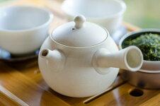 極上のお茶の一滴小振りな急須豊白浜常滑焼深蒸し茶用帯網急須cc小さな急須で丁寧に入れたお茶は、極上の味わい。【ab】【asr】02P03Dec16