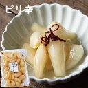 【国産・熊本県産】ピリ辛らっ京 (200g)】らっきょう・ラッキョウ・熊本産・漬物 1