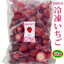愛媛産冷凍いちご1kgハウス栽培【国産】【無添加】【冷凍便】イチゴ苺【RCP】