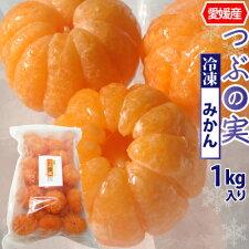 白綿を取り除いた冷凍みかん。丸ごと食べられます。愛媛県産つぶの実冷凍みかん1kg丸まま