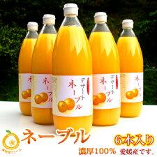 ネーブルオレンジのストレートジュース