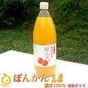 甘み濃厚/濃厚100%果汁 愛媛ぽんかんストレートジュース1...
