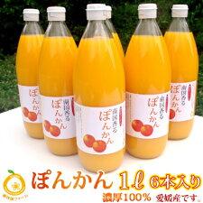 ぽんかん100%果汁無添加。無調整のシンプルな美味しさ。