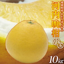 ☆小玉限定特別価格☆河内晩柑家庭用10kg