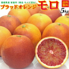 ご予約赤み、風味の強いジュースに最適愛媛産モロ5kg(ブラッドオレンジ)(送料無料、北海道沖縄県送料別途)
