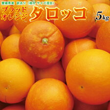 小玉・傷あり【送料無料】訳あり愛媛産ブラッドオレンジ(タロッコ)5kg