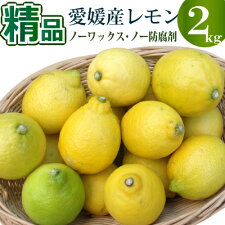 愛媛県国産の安心レモン。ノーワックス。防腐剤未使用。