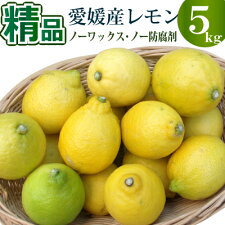 レモン5kg