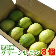 愛媛国産レモン