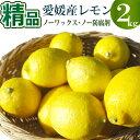 愛媛県産 レモン2kg 精品【ノーワックス】【ノー防腐剤】【...