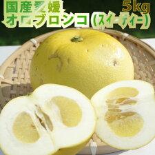 【予約開始】【送料無料】愛媛国産ゴールデンオロブランコ5kg(別名スィーティー)