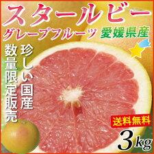 赤い果肉の希少種!愛媛国産グレープフルーツ★スタールビー3kg