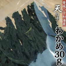 【愛媛県宇和海産】乾燥わかめ30グラム入り【RCPsuper1206】