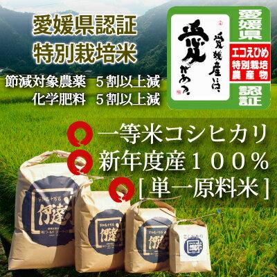 特別栽培米愛媛産コシヒカリ