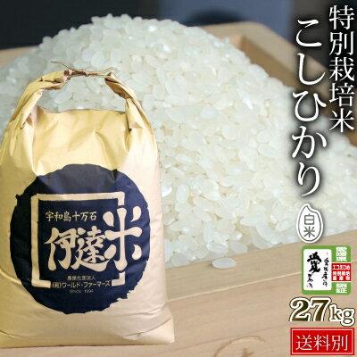 特別栽培米こしひかり27kg