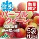 氷梅 冷凍パープルクィーン(梅酒・梅ジュース用) 2kg(400g×5袋) ☆和歌山県紀州…
