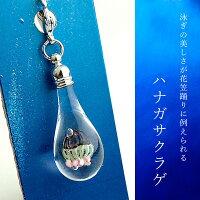 クラゲminiチャーム01-11(ハナガサクラゲ)cha-kurage01-11-6