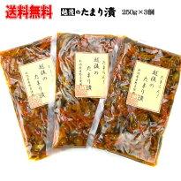 越後のたまり漬3個セット送料無料だいこん、きゅうり、にんじん新潟県産野菜きなせや本舗