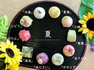 【 夏 】10個入 高級 上生菓子 練り切り 期間限定 お取り寄せ 個包装 送料無料