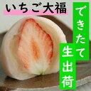 10個【期間限定】いちご大福 / お伊勢さん 金菓賞 / 母