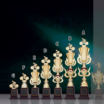 トロフィー T8738E ★高さ320mm《B-1》選べる競技108種類★名入れ彫刻無料 ゴルフコンペ 野球 サッカー バレー バスケットボール スポーツ大会 優勝記念品