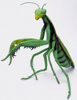 ハロウィン【送料無料】メガカマキリ 巨大カマキリ 昆虫 フィギュアー メガシリーズ