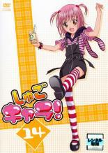 アニメ, TVアニメ DVD 14