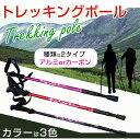 Trekkingpole_01