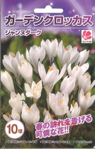 《球根》《ガーデニング》《園芸》《春咲き》《コンテナガーデン》□D-8 クロッカス色別10球 ...
