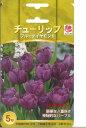 □ チューリップ ブルーダイヤモンド 5球 - 錦幸園 楽天市場店