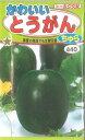 《トーホクの種》《家庭菜園》《園芸》《ガーデニング》《ベランダガーデン》□ 【メール便】種...