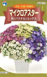 □ 種子 ★ 微阿斯特日本粉彩混合