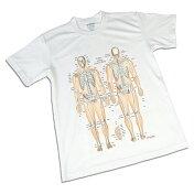 Tシャツ骨柄「骨チャートデザイン(筋T)」