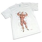 筋次郎Tシャツ