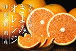 「送料無料」訳ありきよみオレンジ10kg(清見
