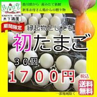 新鮮初たまご【送料無料】北海道・沖縄別途【期間限定】元気な若鶏が初めて産んだ【小さいたまご】