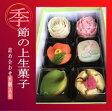 【母の日限定 送料無料】季節の上生菓子セット カーネーションの練り切り 母の日