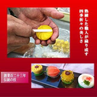 【送料無料】季節の上生菓子と栗どら杏どらセット