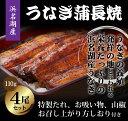 【御中元】 浜松・浜名湖 うなぎ 蒲焼 110g 4尾セット 国産