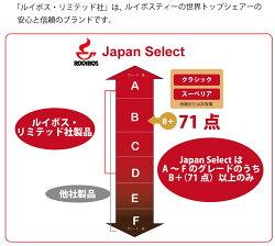 ワケありルイボスティー【70%OFF】ティーバッグ100包パック【送料無料】