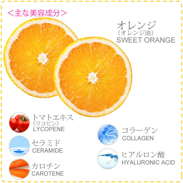 AP DJ-003 N2882168 衛生水 未使用 【中古】 ドモジョン 日本インテック 洗浄水生成器