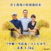 庄内米井上農場の特別栽培米【つや姫】【雪若丸】【コシヒカリ】玄米4.5kg