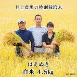 庄内米 山形県鶴岡市 井上農場の特別栽培米【はえぬき】白米 4.5kg【令和2年新米】【送料無料】