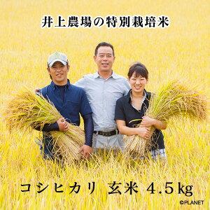 井上農場の特別栽培米【コシヒカリ】玄米4.5kg