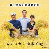 井上農場の特別栽培米【コシヒカリ】玄米9kg