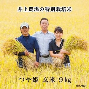 井上農場の特別栽培米【つや姫】玄米9kg